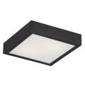 Argon 0723 - Lampa sufitowa TEQUILA BIS 2xE27/60W/230V