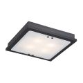 Argon 1583 - Lampa sufitowa TEQUILA 4xE27/60W/230V