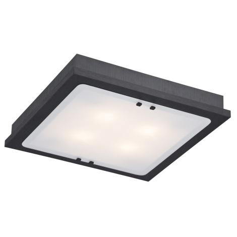 Argon 1584 - Lampa sufitowa TEQUILA 4xE27/60W/230V