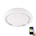 Eglo 96686 - LED Ściemnialne oświetlenie ścienno-sufitowe CAPASSO-C LED/17W/230V