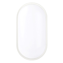 Greenlux GXPS028 - LED Plafon  DARA OVAL LED/20W/230V IP65