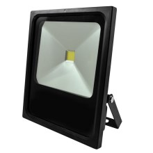 LED Reflektor DAISY LED/70W/230V IP65