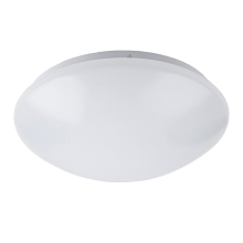 Nedes LCL421/44 - LED Plafon łazienkowy LED/12W/230V