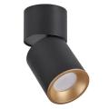 Oświetlenie punktowe NIXA 1xGU10/10W/230V czarny/złoty