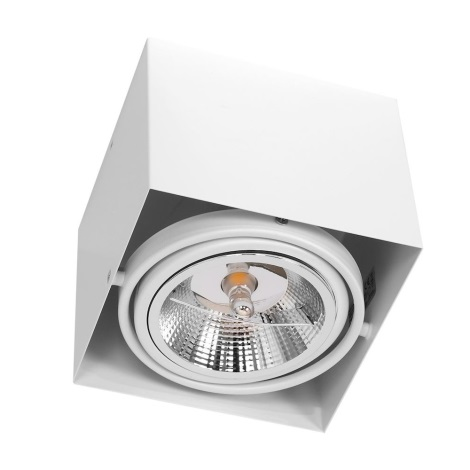 Oświetlenie punktowe PLAZA AR111 1xGU10/12W/230V