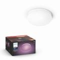 Philips 40905/31/P9 - LED Plafon HUE FLOURISH LED/32W/230V