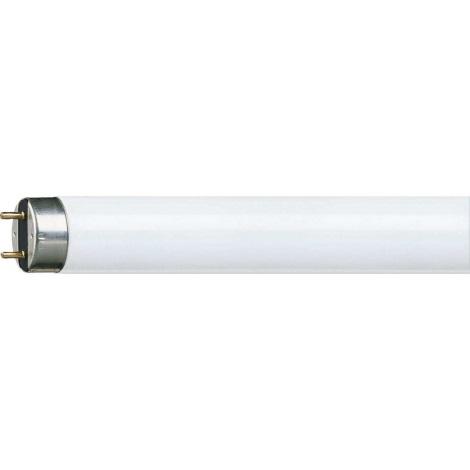 Świetlówka liniowa Philips G13/15W/230V