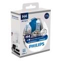 ZASTAW 2x Żarówka samochodowa Philips WHITEVISION 12342WHVSM H4 PX26d/60W/55W/12V